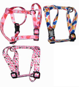 Leash & Collar Lcq0001